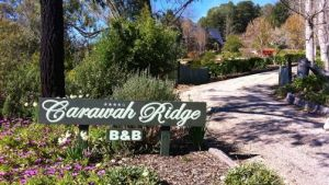 Carawah Ridge Bed and Breakfast - Hotel Accommodation