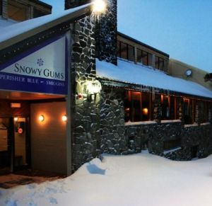 Snowy Gums Chalet - Hotel Accommodation