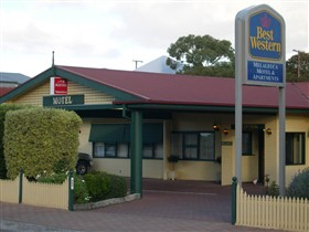Best Western Melaleuca Apartments - Hotel Accommodation