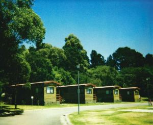 Blue Mountains Tourist Park - Katoomba Falls - Hotel Accommodation