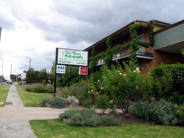 The Vines Motel  Cottages - Hotel Accommodation