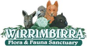 Wirrimbirra Sanctuary - Hotel Accommodation