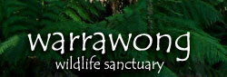 Warrawong Wildlife Park - Hotel Accommodation