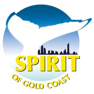 Spirit of Gold Coast Whale Watching - Hotel Accommodation