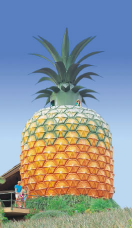 The Big Pineapple - Hotel Accommodation