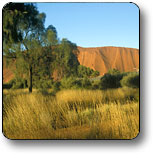 Uluru - Kata Tjuta National Park - Hotel Accommodation