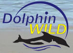 Dolphin Wild - Hotel Accommodation