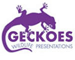 Geckoes Wildlife Presentations - Hotel Accommodation