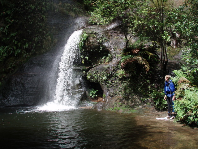 Blue Mountains Adventure Company - Hotel Accommodation