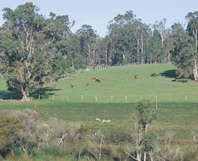 Scenic Drives - Bunbury Collie Donnybrook - Hotel Accommodation