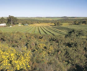 Chapman Valley Scenic Drive - Hotel Accommodation