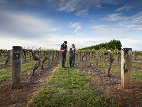 Coonawarra Wineries Walking Trail - Hotel Accommodation