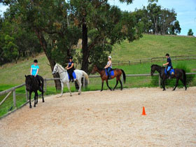 Megan Jones Riding School and Trail Rides - Hotel Accommodation