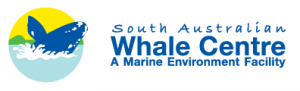 South Australian Whale Centre - Hotel Accommodation