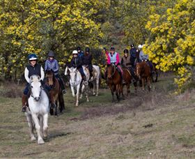 Burnelee Excursions on Horseback - Hotel Accommodation