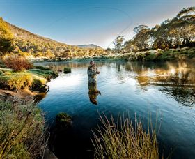 Fly Fishing Tumut - Hotel Accommodation