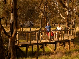 Loxton's Drives Walks and Trails - Hotel Accommodation