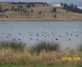 Lake Liddell Recreation Area - Hotel Accommodation