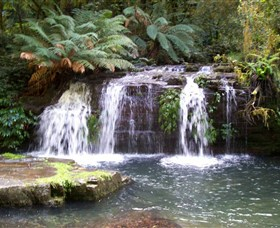 Barrington Tops National Park Walks - Hotel Accommodation