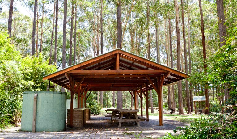 Bongil picnic area - Hotel Accommodation