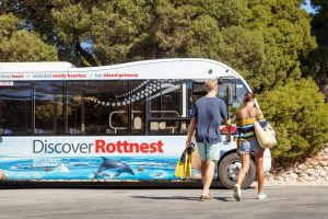Rottnest Island Tour from Perth or Fremantle including Bus Tour - Hotel Accommodation