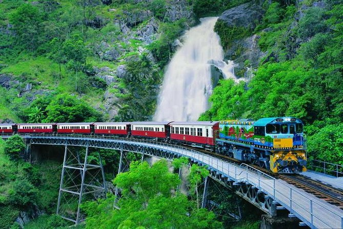 Full-Day Tour with Kuranda Scenic Railway Skyrail Rainforest Cableway and Hartley's Crocodile Adventures from Cairns - Hotel Accommodation