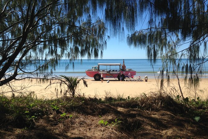 1770 Coastline Tour by LARC Amphibious Vehicle Including Picnic Lunch - Hotel Accommodation