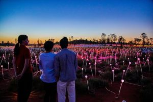 Uluru Field of Light Sunrise Tour - Hotel Accommodation
