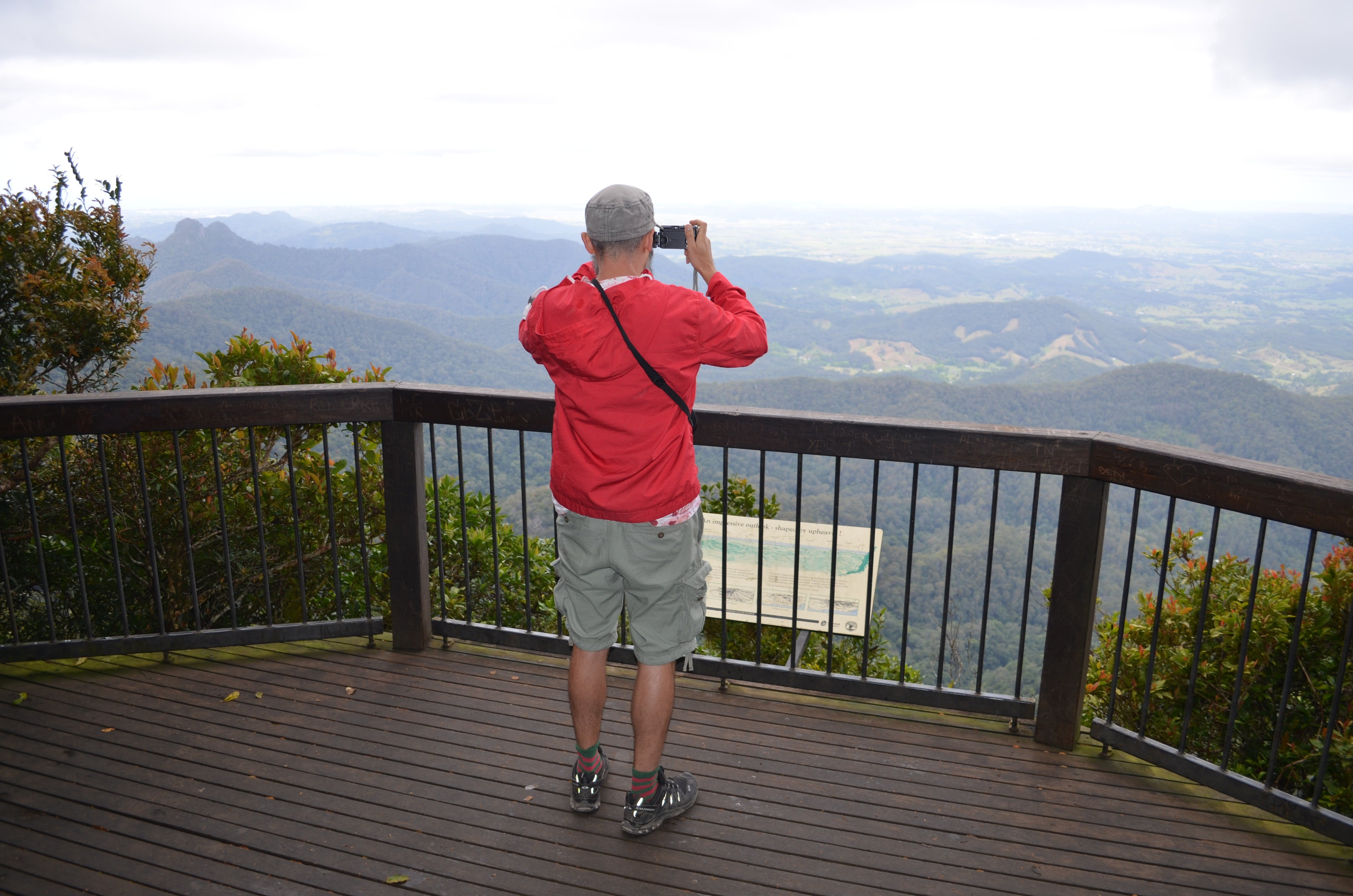 Best of All lookout track Springbrook National Park - Hotel Accommodation