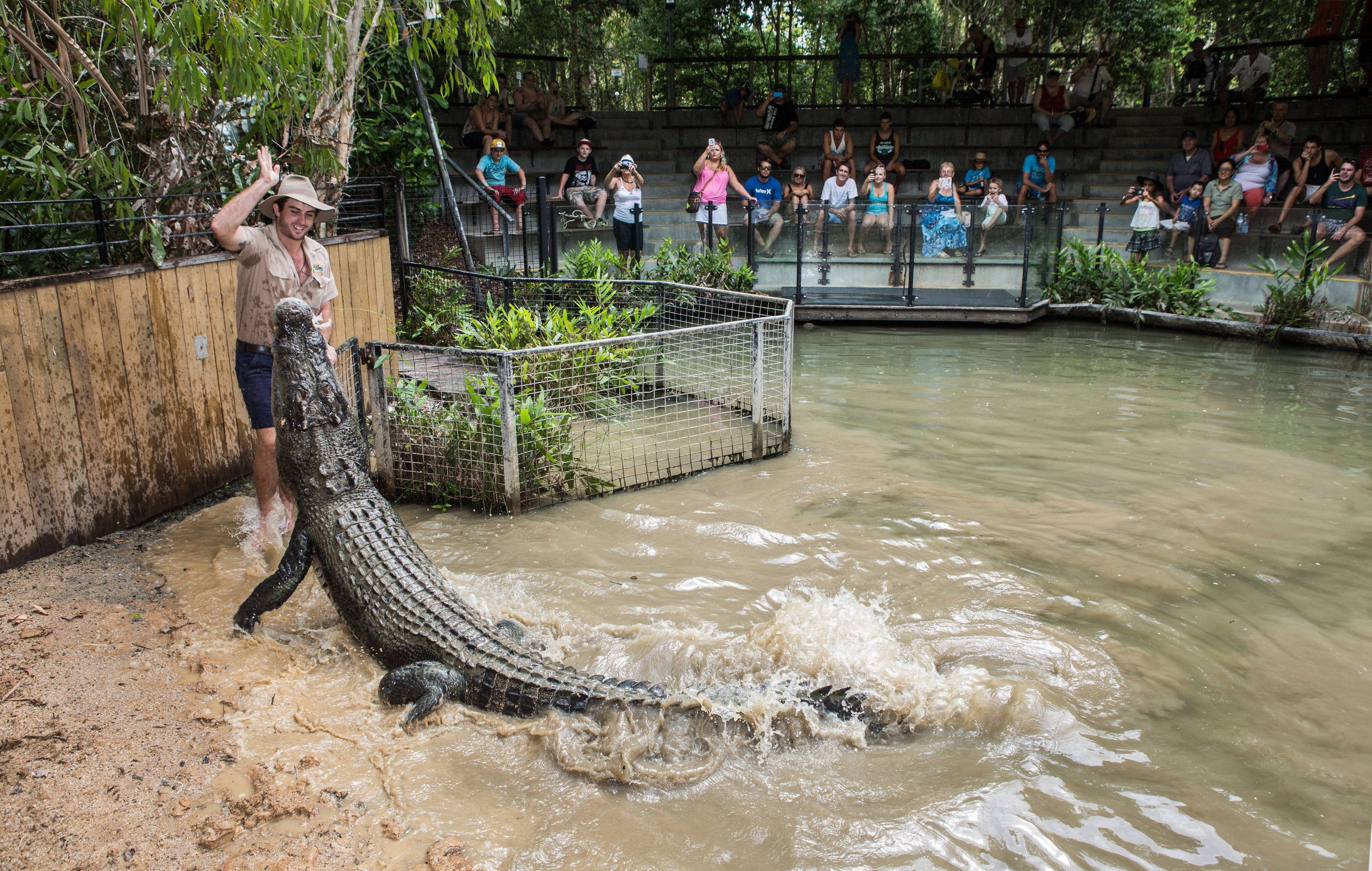 Hartley's Crocodile Adventures - Hotel Accommodation