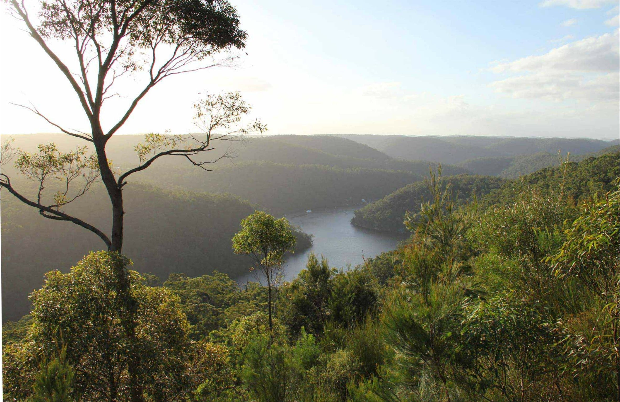 Great North walk - Berowra Valley National Park - Hotel Accommodation