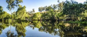 Tumut River Walk - Hotel Accommodation