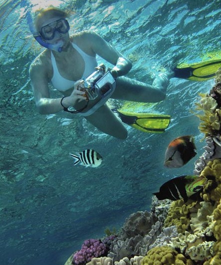 Calypso Reef Charters - Hotel Accommodation