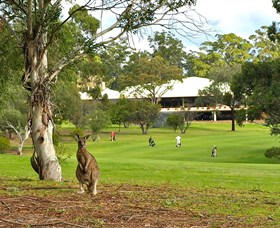 Pambula Merimbula Golf Club - Hotel Accommodation