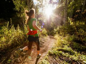 Run Dungog - Hotel Accommodation