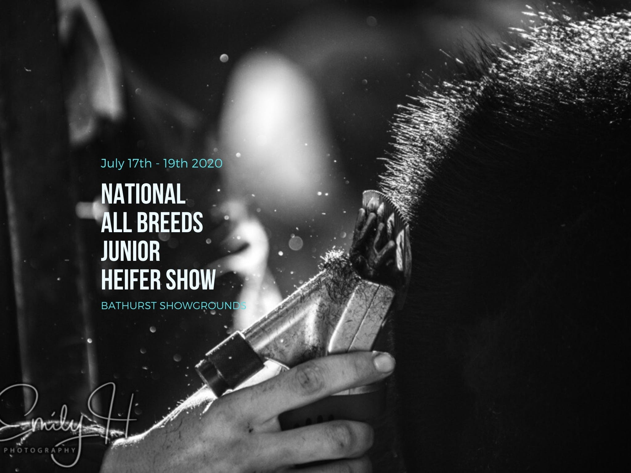 National All Breeds Junior Heifer Show - Hotel Accommodation