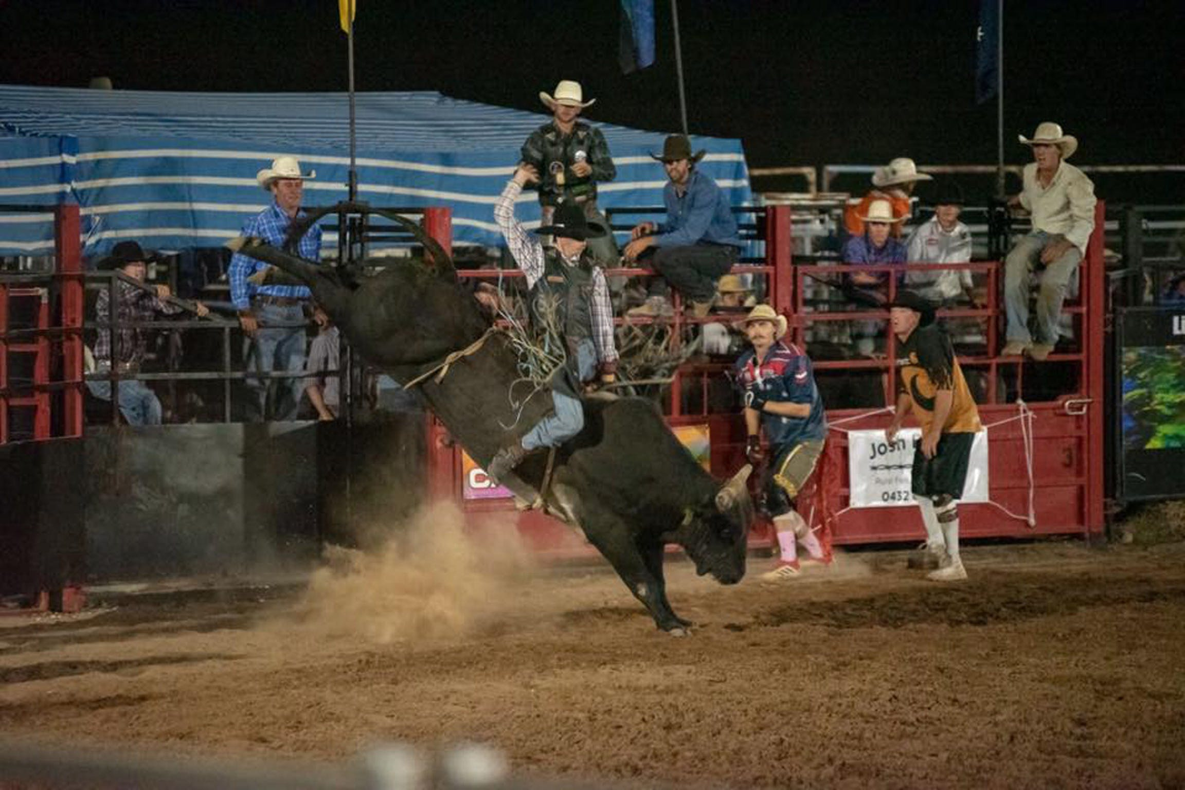 Black Opal Bull and Bronc Ride - Hotel Accommodation
