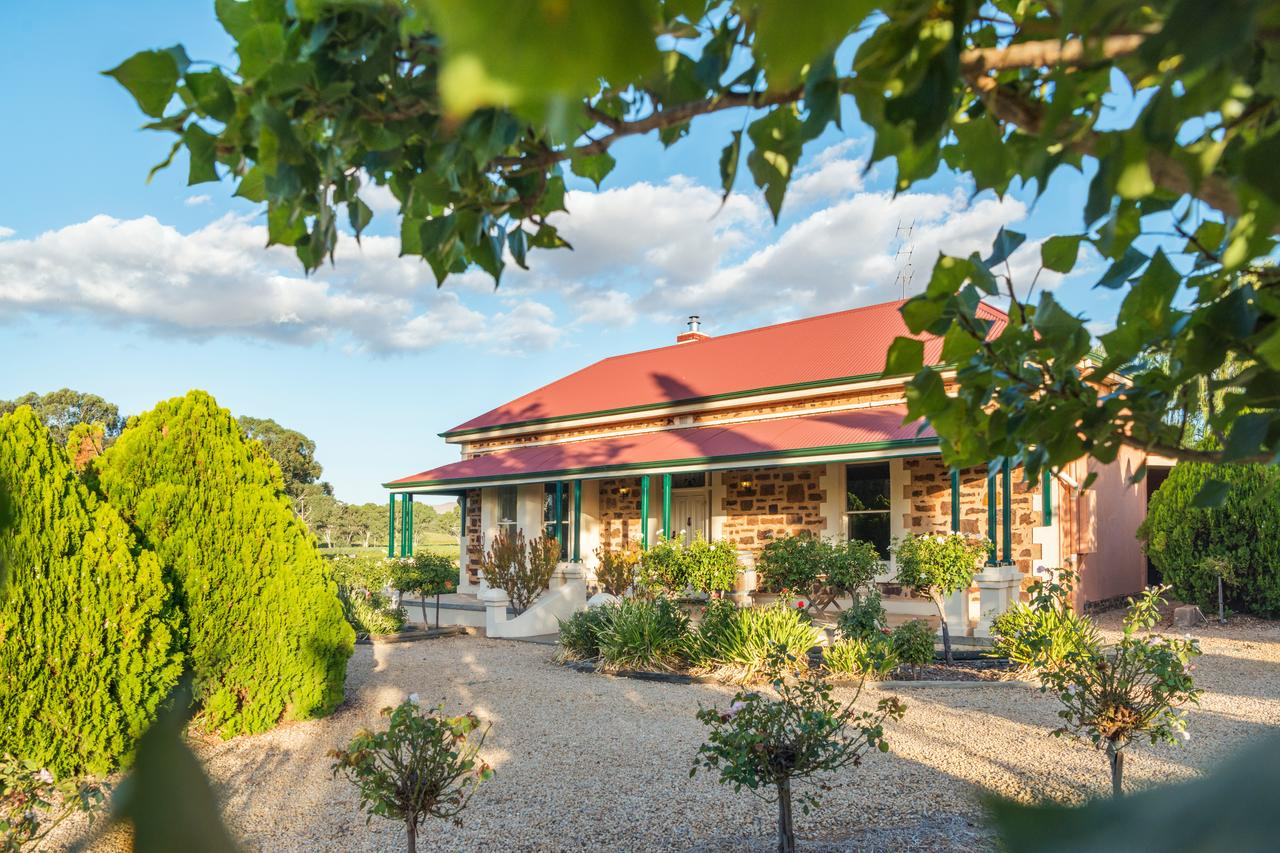 Barossa Shiraz Estate - Hotel Accommodation