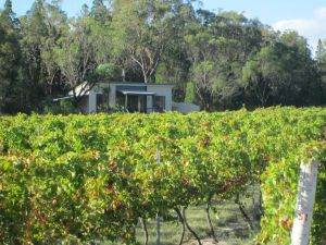 Just Red Wines Cabins - Hotel Accommodation